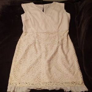 Lace Blush Dress